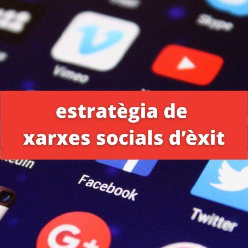 Últim seminari estratègia de xarxes socials d'èxit | 1 de desembre